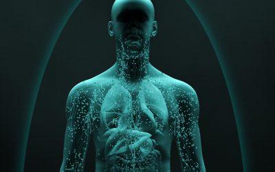 7 maneras en que la hidratación refuerza tu sistema inmune